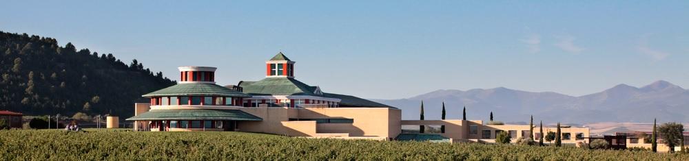 Visita bodega museo VIVANCO