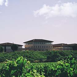Bodega Rioja Vega exterior