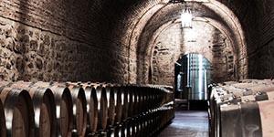 Visita Bodegas Riojanas