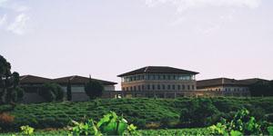 Visita Bodega Rioja Vega